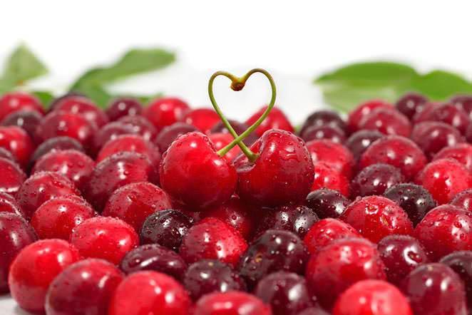 Лучшая начинка для пирога – сладкие свежие ягоды